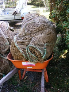 1 roll of fish netting off to be cut up for our garden